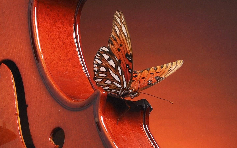 La Salud, un violín para afinar